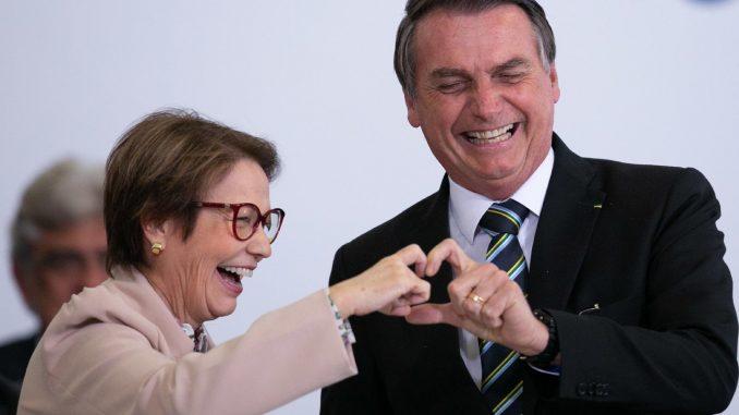 Bolsonaro e Tereza
