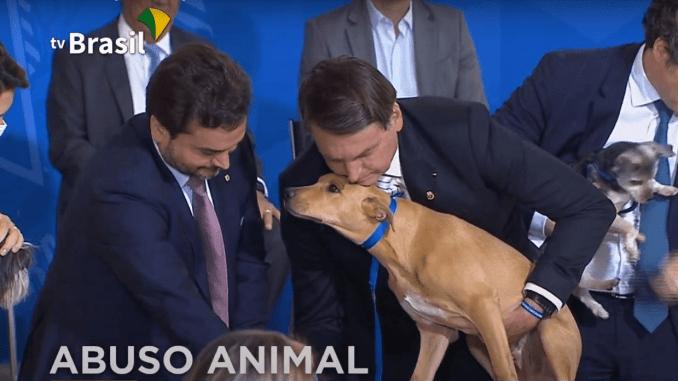 Bolsonaro maus tratos a animais